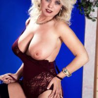 Blonde MILF Michelle Willings holds her big natural breasts in garters and nylons