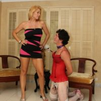 Hot blonde wife Charlee Chase forces her crossdressing sissy husband to his knees