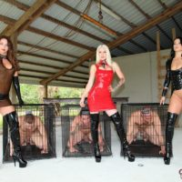 Mistress Brianna and a two other clothed dommes put male slaves away in cages